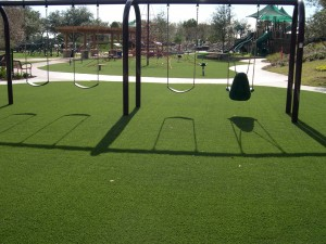 Beautiful Playground Grass