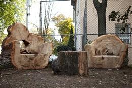 Log furniture for playground